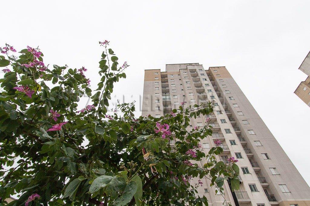 Apartamento - Rua Emilio Goeldi - Agua Branca - São Paulo - 104930