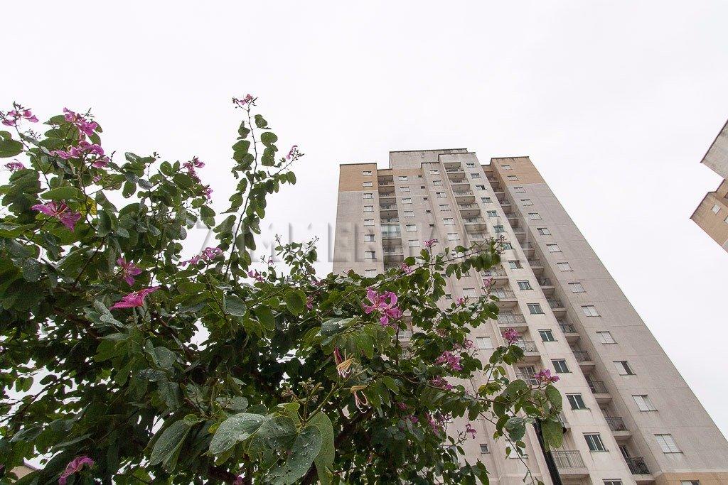 Apartamento - Rua Emilio Goeldi - Agua Branca - São Paulo - 98408
